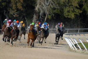 free bet on horse racing